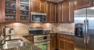 Dallas Luxury Highrise Kitchen