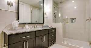 Dallas Uptown Highrise Luxury Master Bath