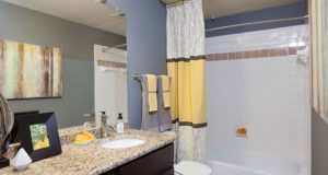 Knox Henderson Apartment Homes Bath