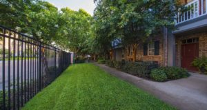 Greenville Ave Luxury Townhomes Green Space