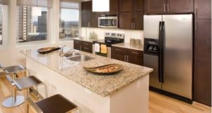 Luxury Downtown Highrise Kitchen