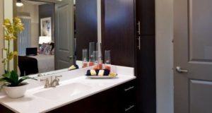 Richardson Apartment Homes Master Bath